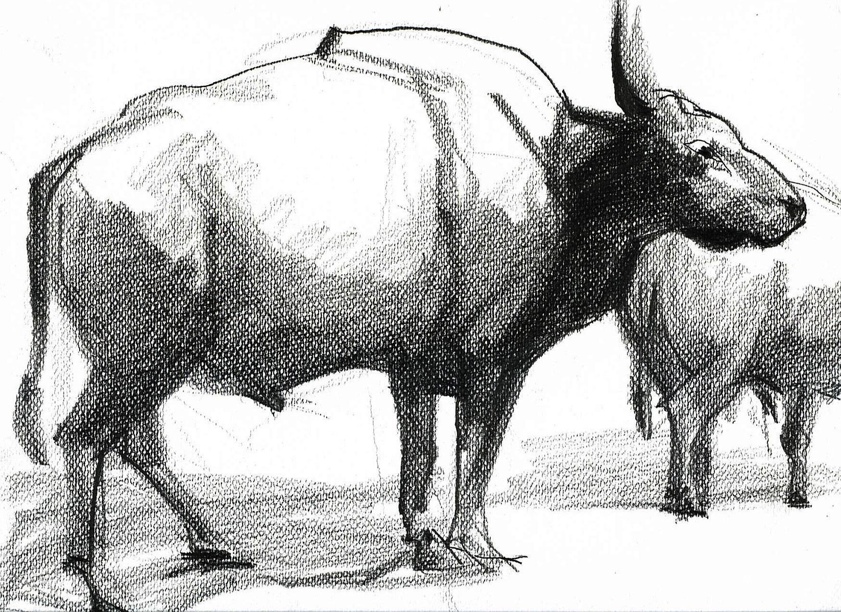 Skizze Tiere